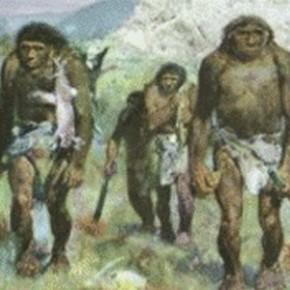 Ученые расшифровали ДНК древнейшего человека