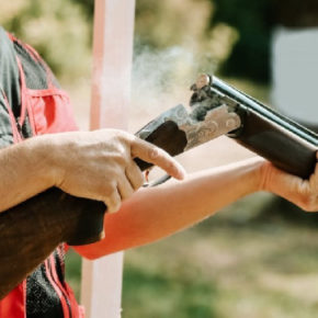 Основными предпосылками «колумбайнов» называются доступность ислабый контроль заоборотом оружия